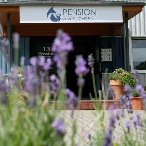 Pension am Fuchsbau Eingangsbereich